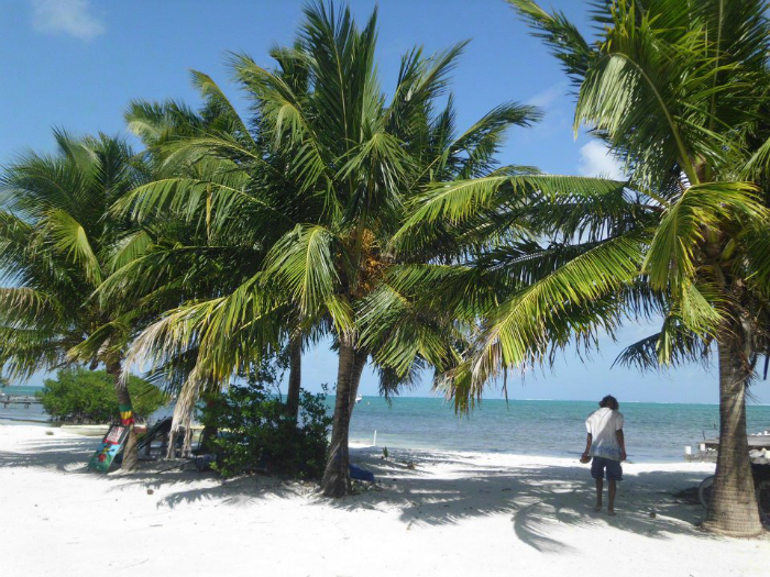 Caye Caulker (Belize)